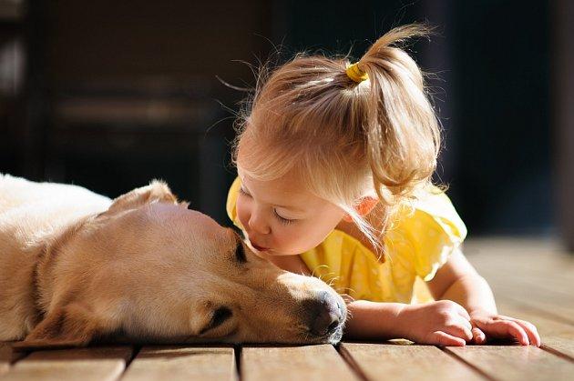 Dobře socializovaný pes a poučené malé dítě