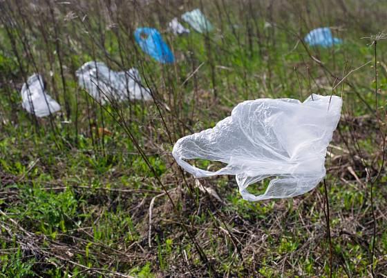 Plastové sáčky nejen, že se dlouho rozkládají, ale představují nebezpečí i pro zvířata.