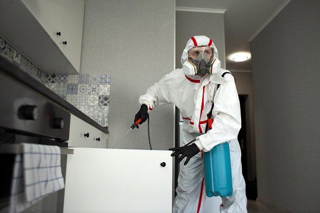 Na mravence nemusíme hned používat chemii, stačí i jednoduché triky