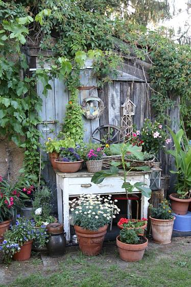 Stará kůlna a stůl jsou ideálním pozadím pro vytvoření výstavky historického nářadí a dalších zahradních pomůcek.