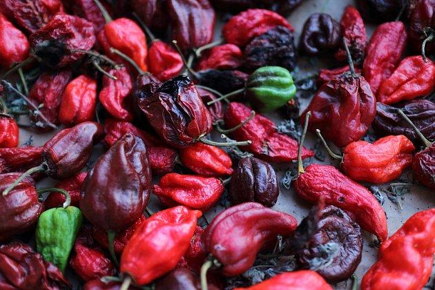 Papričky habanera, na které se přepočítává ideální spotřeba.