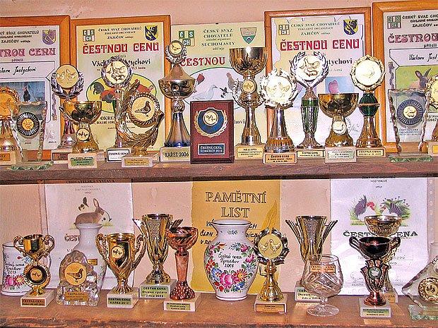 Část trofejí za chovatelské úspěchy