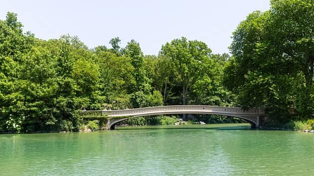 Zelená vodní hladina nemusí být vždy znamením špatné kvality vody.