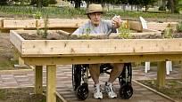Vyvýšené záhony jsou vhodné i pro tělesně postižené zahrádkáře