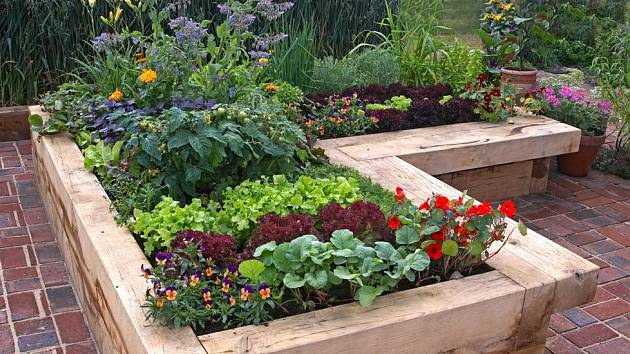 Zeleninu i jedlé květiny lze pěstovat na dekorativních záhonech