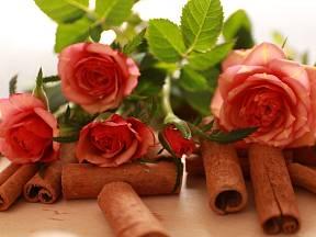 Zejména u růží zahradníci tvrdí, že skořicový prášek je pozoruhodný pro množení nových kořenů z řezaných stonků.