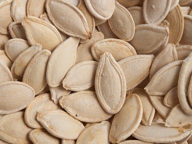 Dýňová semena si zachovávají klíčivost po mnoho let