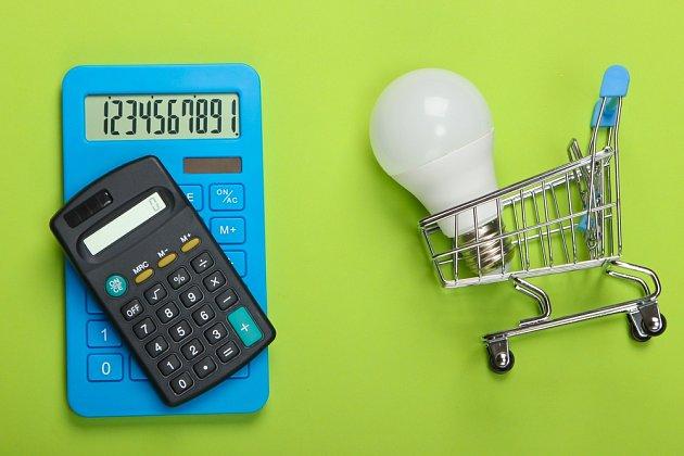Pro svou trvanlivost, úsporu elektrické energie a nejnižší emise CO2 ze všech druhů svítidel byly LED žárovky vybrány Evropskou unií.
