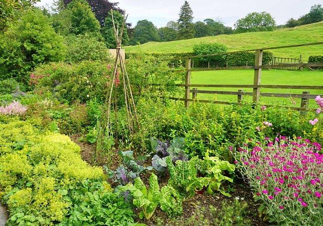 I užitková zahrada může být krásná