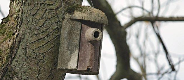dřevocementová ptačí budka s prodlouženým vchodem, který hnízdo chrání před predátory