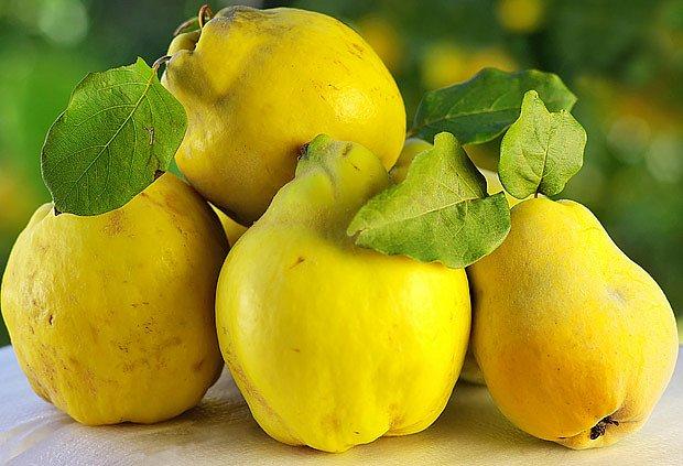kdoule: málo známé avšk velmi zajímavé ovoce