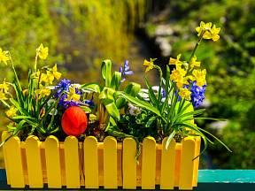 Truhlíky se nezdají, ale jsou skvělou a levnou pomůckou k vytvoření jarní dekorace.