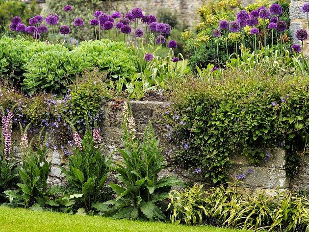 Zahrada nabízí nekonečné možnosti k vyjádření krásy