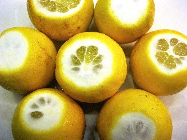 Citrusům nejprve seřízneme špičku.