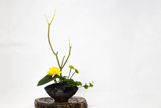 Ikebana to je také jednoduché nazírání na krásu.