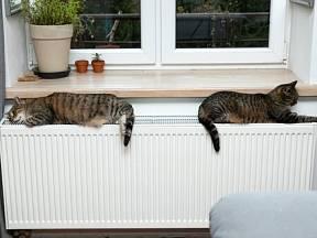 Aby vaše topení fungovalo správně, odvzdušňujte radiátory pravidelně během celé topné sezóny.