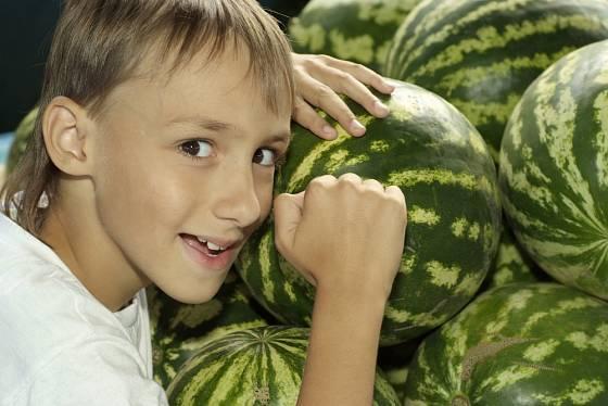 Zralý meloun by měl znít při poklepu dutě.