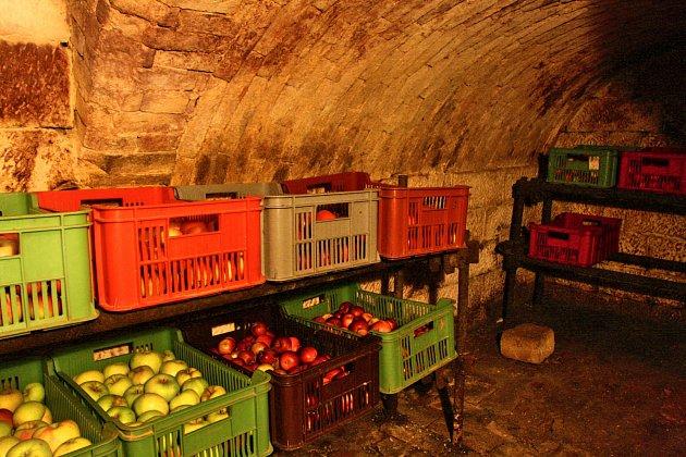 Plastové přepravky na konstrukci z lešeňových trubek umožňují cirkulaci vzduchu kolem ovoce