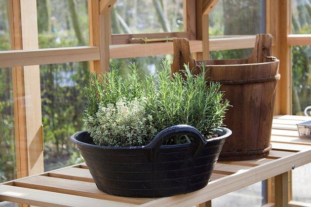 Zimní zahrada nebo temperovaný skleník je ideální