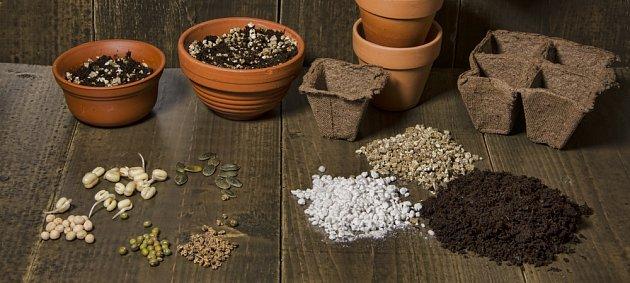 Předpěstovávat můžete v substrátech minerálníhc i organických