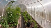 Obloukový tvar skleníku umožňuje optimální využití slunečních paprsků