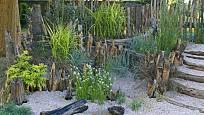 Oblázky mohou vyplnit i vlhčí a stinnější kouty, kde pokvete i hrotnosemenatka