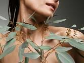 Pročistěte si plíce eukalyptem a dalšími bylinami.