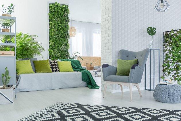 Vegetační zelené stěny lze umístit jak v interiéru, tak v exteriéru.