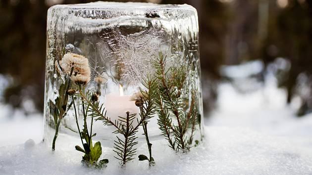 Led dokáže s vaší malou pomocí vyčarovat kouzlené lucerny na zahradu.