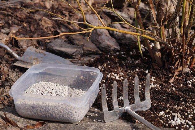 Borůvky hnojte víckrát za vegetační období.