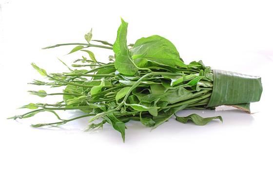 Gymnema lesní (Gymnema sylvestre) má dlouhou historii využití v tradiční indické medicíně.
