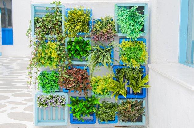 Při vytváření vertikální stěny u vás doma popusťte uzdu fantazii. Pohrát si jde nejen s rámy, ale i barvami a květinami