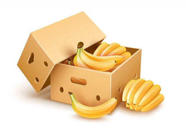 Jen málokterá jiná papírová krabice unese takovou zátěž, jako banánovka.