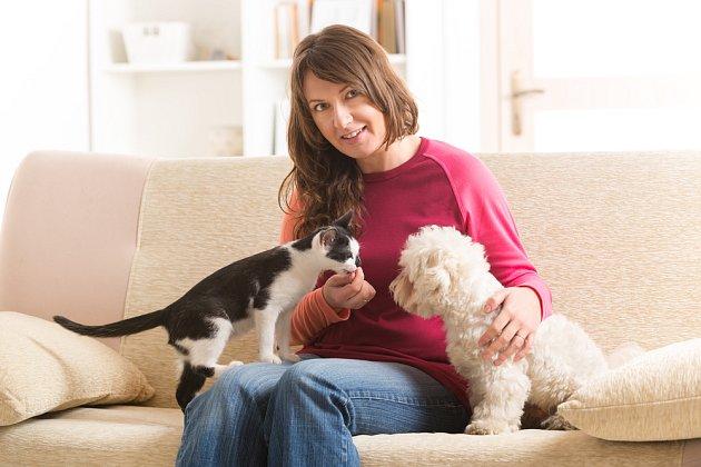 Na seznámení kočky a psa osobně dohlížejte.