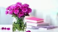řezané chryzantémy na minimalistický způsob