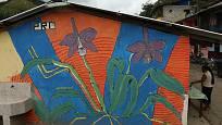 Součástí výstavy orchidejí jsou v roce 2020 také fotografie z Ekvádoru.
