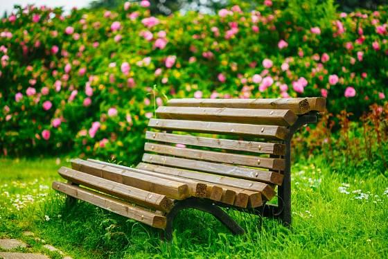 zahradní lavička ze dřeva