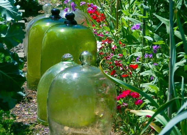 Klasické zahradnické zvony jsou krásné i užitečné