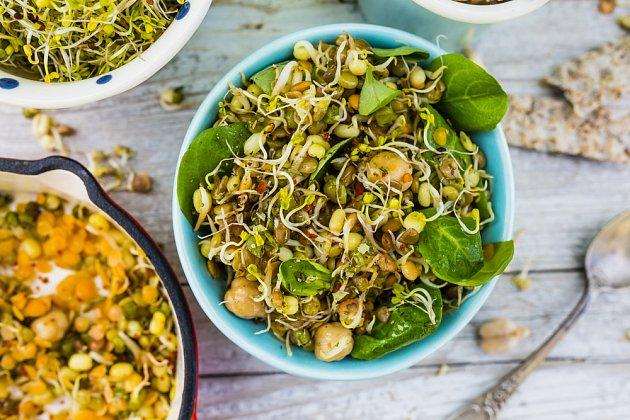 Klíčky zpestří salát, jsou chutné a nabité vitamíny
