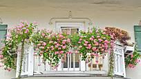 Květinové truhlíky promění balkón v kouzelné místo
