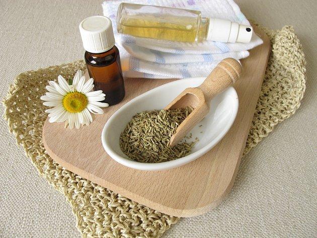 Pro přípravu repelentu můžete využít jak sušený, tak čerstvý rozmarýn.