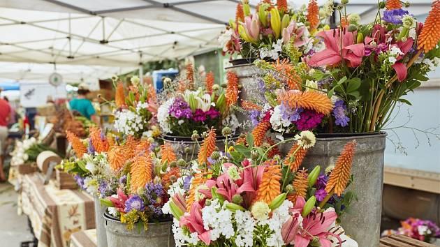 Řezané květiny