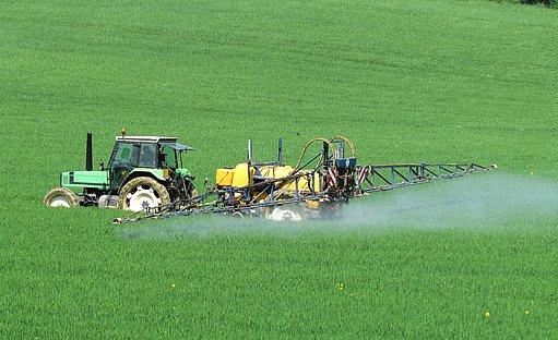 na polích jsou často herbicidy používány