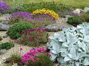 Štěrkové záhony: Jsou nádherné a když je dobře uděláte, neroste na nich plevel.