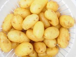 Malé nové brambory, zvané grenaille, milují hlavně Francouzi.