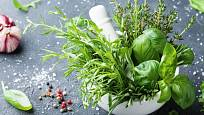 Bylinky jídlo ochutí a soli pak postačí minimum