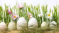 Osení je skvělým pozadí pro velikonoční dekorace
