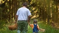 Houbaření je příležitost pro společnou procházku lesem