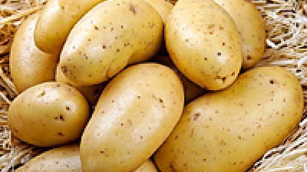 Jak nakupovat kvalitní brambory?