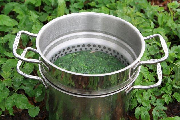 špenát z bršlice, jako příloha i příměs k těstovinám